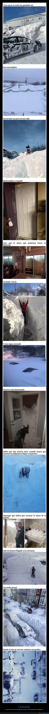 canadá,nieve,ventisca