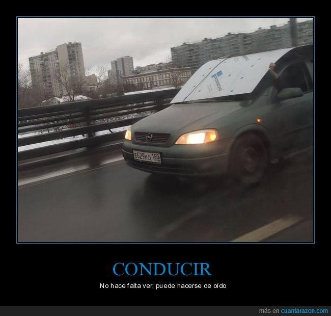 coche,parabrisas,transportando,ver,wtf