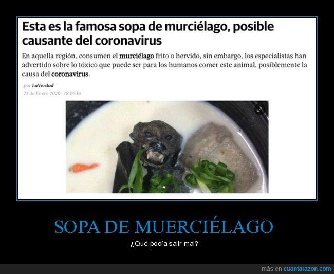 coronavirus,murciélago,sopa