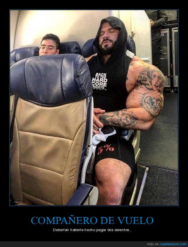 avión,compañero,musculoso,vuelo