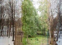 Enlace a Cada porción vertical es un día del año. Impresionante. Foto de Eirik Solheim