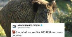 Enlace a Las 3 noticias más polémicas del día de Mediterráneo Digital, que hasta les han hecho ganar una denuncia