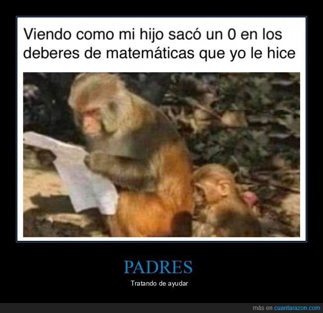 0,deberes,hijo,matemáticas,monos,padre