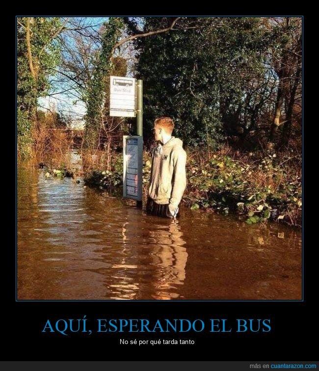esperando,inundación,parada de autobús