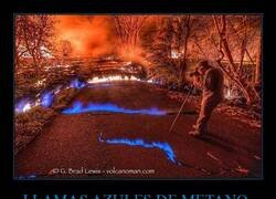 Enlace a Fuego azul