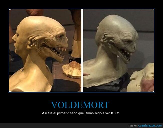 diseño,harry potter,voldemort