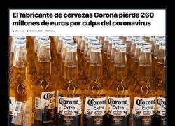 Enlace a Daños colaterales del coronavirus