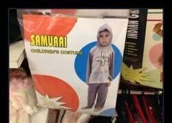 Enlace a ¿Qué clase de samurái es este?
