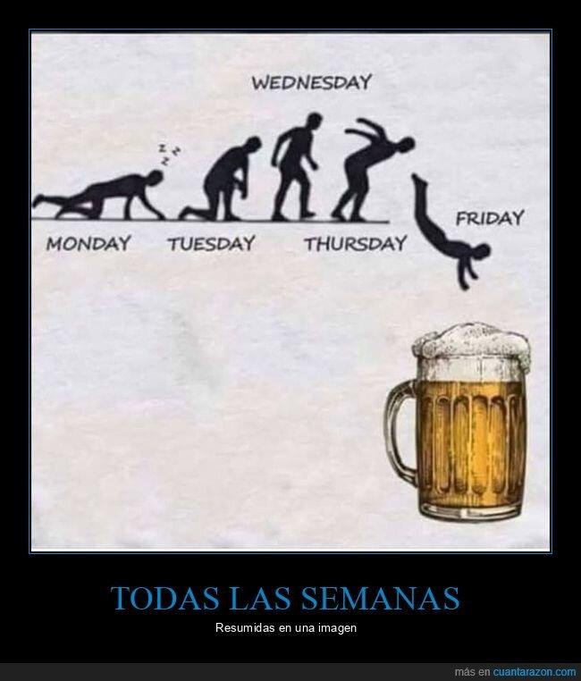 cerveza,semana