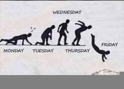 Enlace a ¡Viernes!