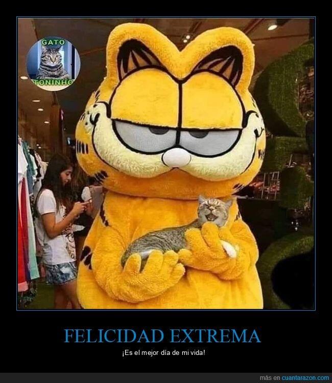 feliz,garfield,gato