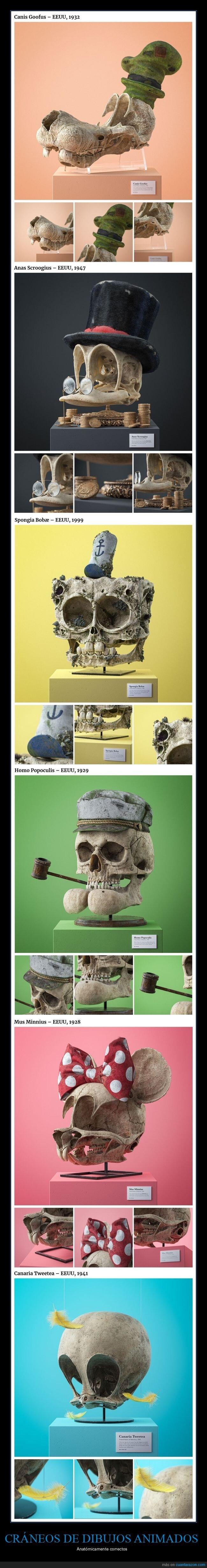cráneos,dibujos animados,personajes