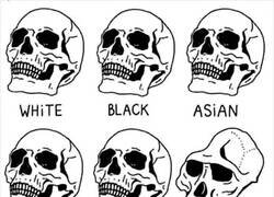 Enlace a No todos somos iguales