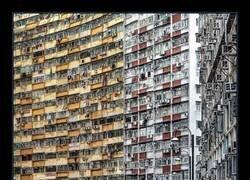 Enlace a Infierno urbano