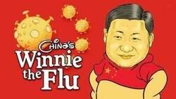 Enlace a La mascota oficial de la pandemia