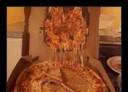 Enlace a Demos gracias al inventor del guardapizza