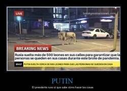 Enlace a En Rusia se han puesto serios