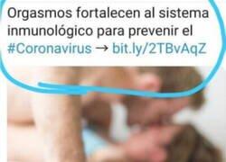 Enlace a Consejos para la prevención del coronavirus