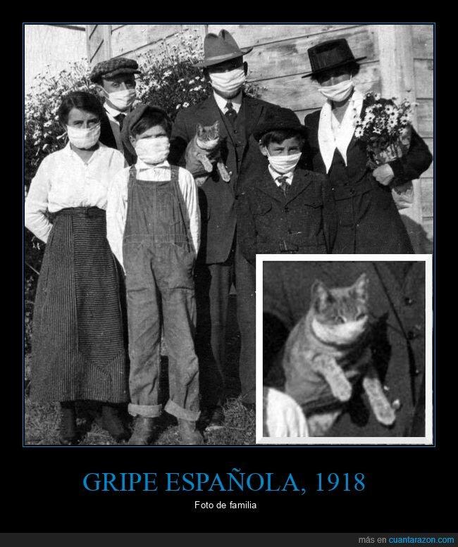coronavirus,familia,gato,gripe española,mascarillas,retro