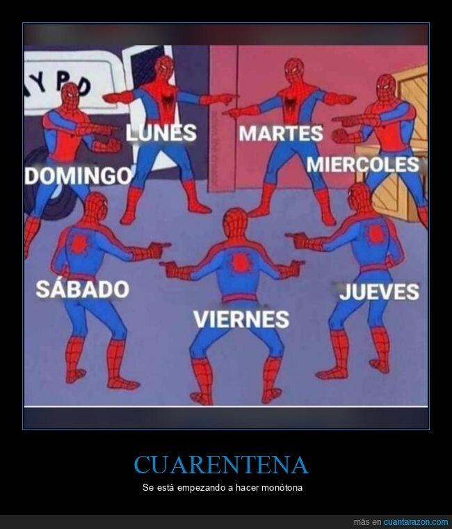 coronavirus,cuarentena,días,iguales,spiderman