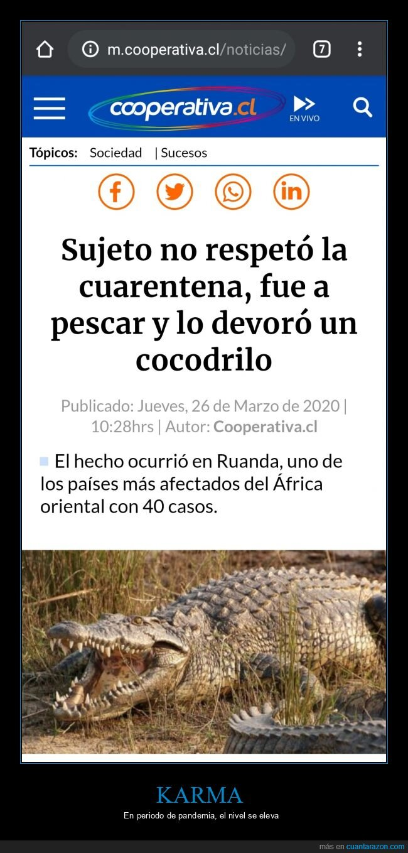 cocodrilo,coronavirus,cuarentena,pescar