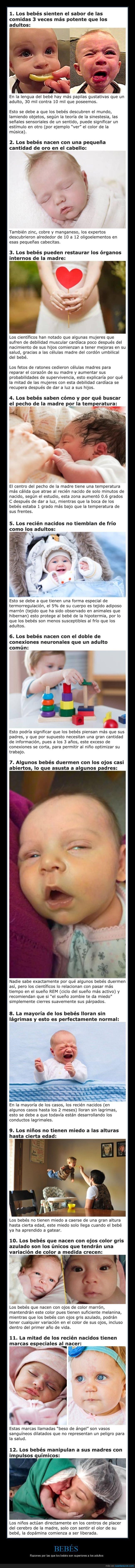 bebés,curiosidades