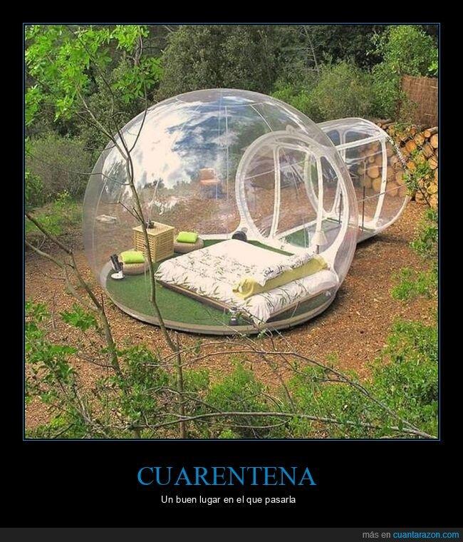 bosque,burbuja,coronavirus,cuarentena,naturaleza