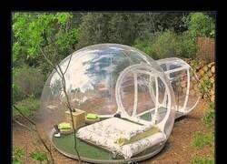 Enlace a Burbuja de aislamiento