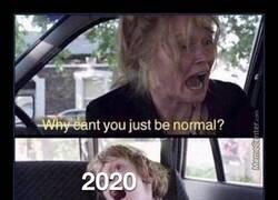 Enlace a ¿Por qué no puedes ser un año normal?