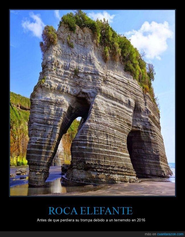 curiosidades,elefante,roca,terremoto,trompa