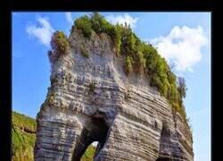 Enlace a La roca elefante en todo su esplendor
