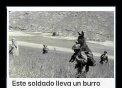 Enlace a A hombros con el burro
