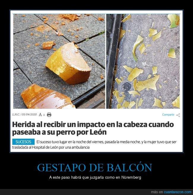 balcón,coronavirus,cuarentena,maceta,wtf