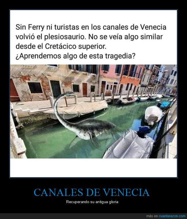 canales,coronavirus,plesiosaurio,venecia