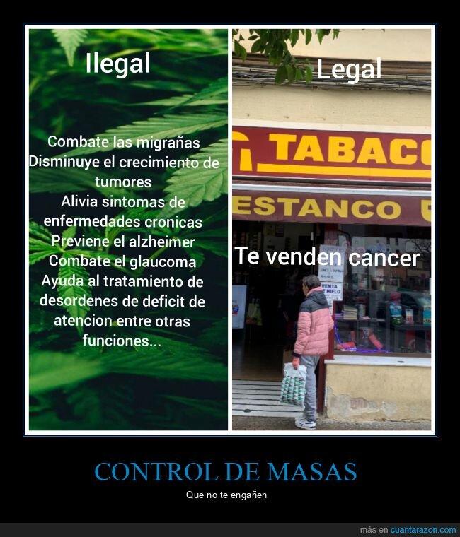ilegal,legal,marihuana,tabaco