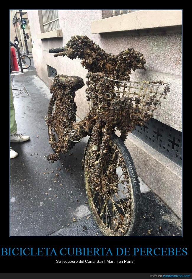bicicleta,canal,percebes