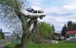 Enlace a Cada vez cuesta más encontrar aparcamiento