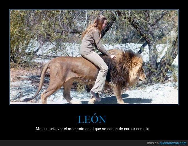 cargando,león,wtf