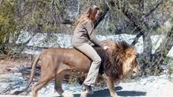 Enlace a Cabalgando a un león