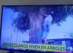 Enlace a Noticias desde Venezuela