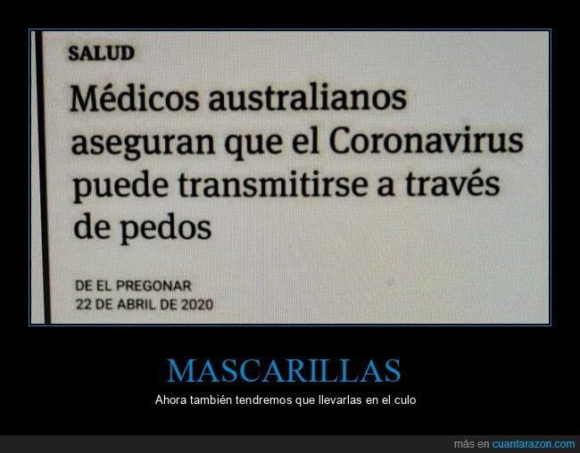 coronavirus,pedos,transmitirse,wtf