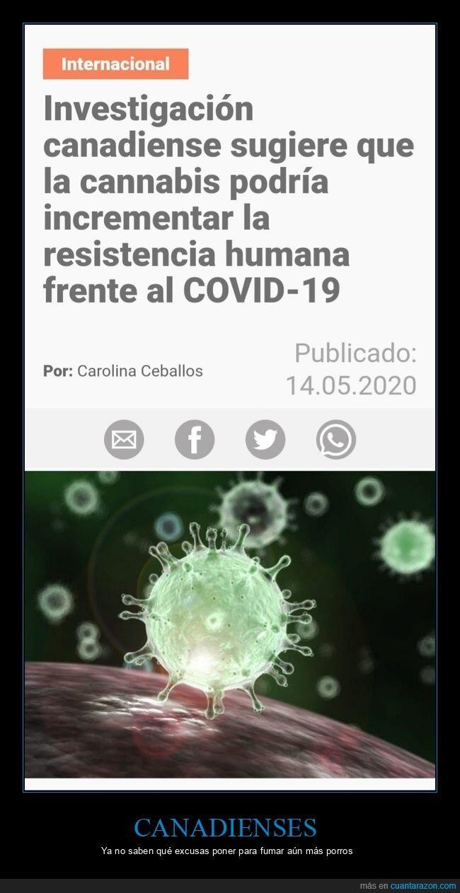 coronavirus,resistencia