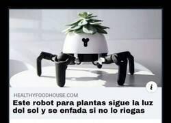 Enlace a El robot que insiste en el cuidado de tus plantas