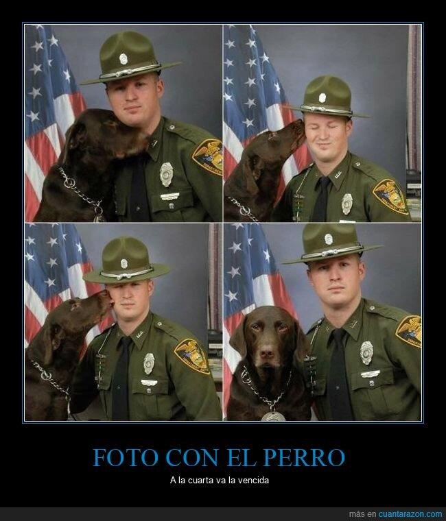 foto,intentos,perro,policía