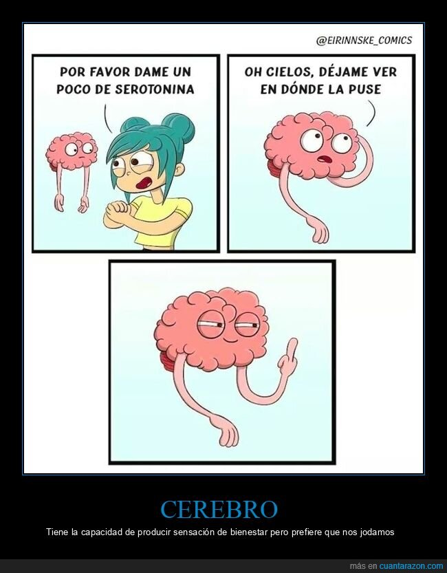 cerebro,serotonina