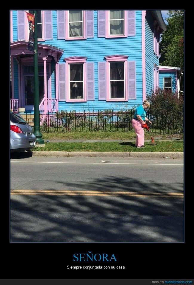 casa,colores,conjuntada,ropa,señora