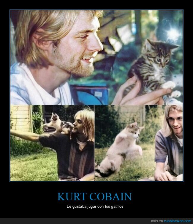 gatos,kurt cobain