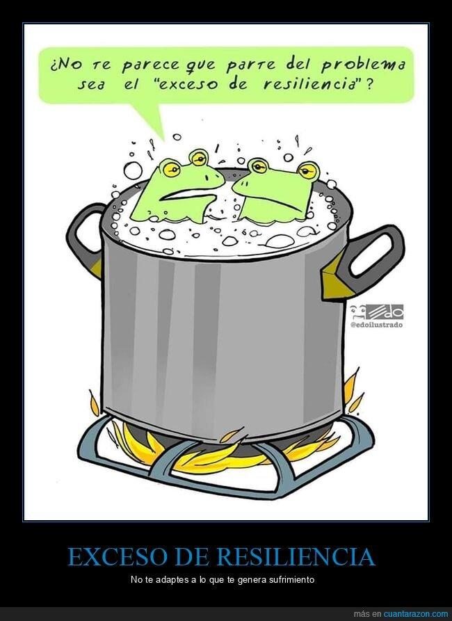 cocinando,ranas,resiliencia,sufrimiento
