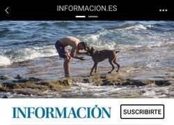Enlace a Se acabaron las playas para perros en Torrevieja