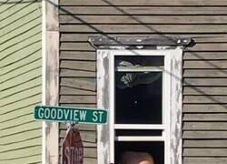 Enlace a Esa calle necesita un cambio de nombre